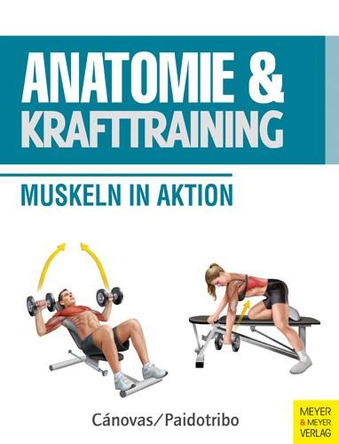 Anatomie und Krafttraining
