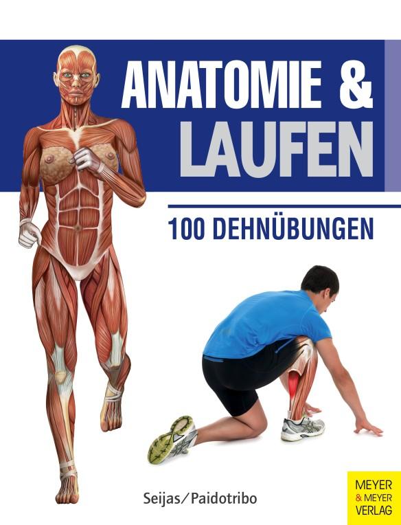Anatomie und Laufen
